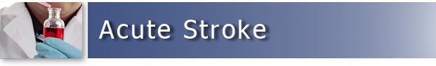 Acute Stroke Animal Models & CRO Services - Preclinical Research - Seth P. Finklestein M.D., CEO